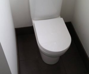 Bathroom renovation - toilet and new tiling newcastle