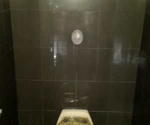lavatory with dark tiling - tiling newcastle